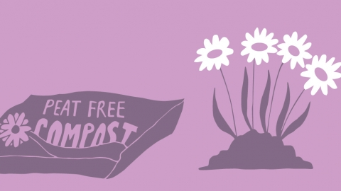 peat free illustration