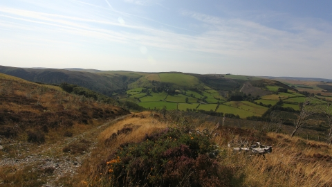 Cefn Cenarth View
